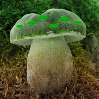 play G2R Mushroom Greenland Escape