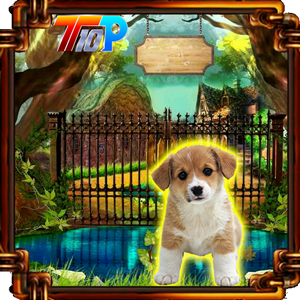 play Release The Cute Puppy