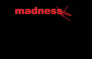 Asylum Madness First Ever Version game