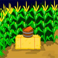 play Mousecity Escape Crazy Corn Maze