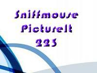 play Pictureit 223