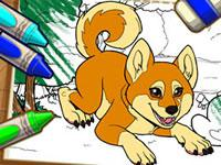 play Color Me Pets 2