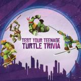 Test Your Teenage Turtle Trivia game
