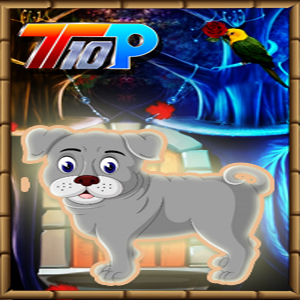 play Thanksgiving Help The Pet