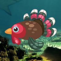 play Turkey Fish Escape