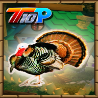 Top10 Thanksgiving: Release The Turkey game