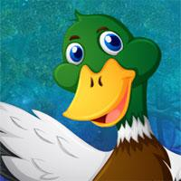play Mallard Duck Rescue