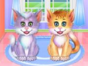 Twin Kitties Spa Caring game
