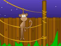 play Toon Escape - Zoo