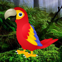 play G2R Macaw Green Forest Escape