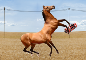 play Horse