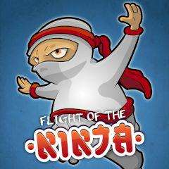 play Flight Of The Ninja
