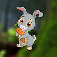 play Little Funny Rabbit Rescue
