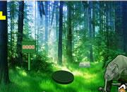 play Komodo Dragon Forest Escape