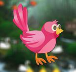 play Rescue Little Bird