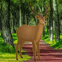 play Trapped Deer Rescue