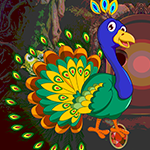 Peafowl Rescue Game_P game