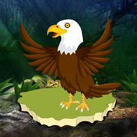 play G2R Fantasy Forest Eagle Escape