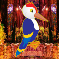 play G2R Fantasy Forest Woodpecker Escape