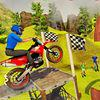 play Tricky Bike Stunts