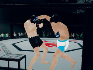 play Mfs: Mma Fighter