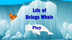 play Life Of Beluga Whales