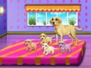 play Labrador Quadruplets Newborn Caring
