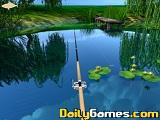 Willow Pond Fishing game