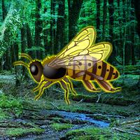 play Giant Wasp Forest Escape