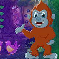 play Lunacy Monkey Rescue