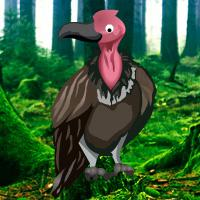 play Games2Rule Vulture Forest Escape