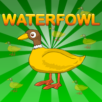 play G2J Waterfowl Rescue
