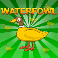 play Games2Jolly Waterfowl Rescue