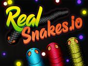 Real Snakes.Io game