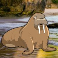 Escape Game Save The Walrus game