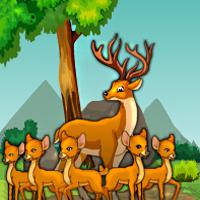 G4E Deer Adventure Escape game