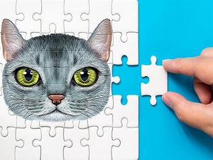 play Abyssinian Puzzle Challenge