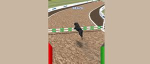 play Dog Racing Simulator