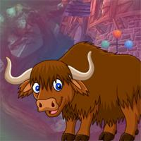 Brown Yak Escape