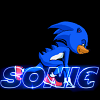 The Hedgehog (Sonic) game