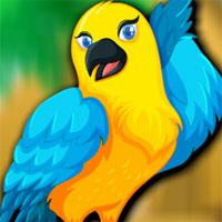 Beautiful Bird Escape game
