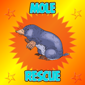 play Mole-Rescue-From-House