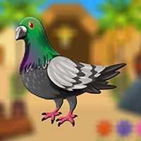 play Smart Pigeon Escape