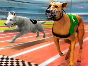 play Real Dog Racing Simulator 3D