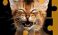 Cat Jigsaw Puzzles game