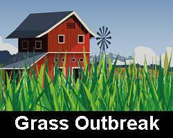 Grass Outbreak game