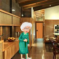 Grandma In Search Of Grandson game