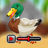 play Mallard Duck Escape Game Walkthrough