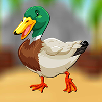 Mallard Duck Escape game