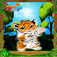 play Top10 Rescue The Little Tiger